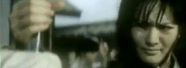 SHANGHAI GIRL BOXER